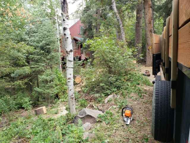 Timber Ridge Tree Service Firebreak Clearing Utah